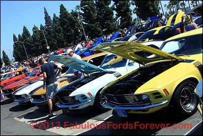 Click image for larger version.  Name:IMG_0430_FFF2013.jpg Views:194 Size:209.2 KB ID:1364