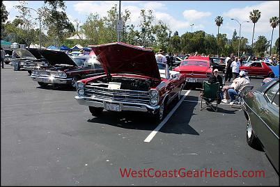 Click image for larger version.  Name:IMG_6972_wm.jpg Views:196 Size:181.6 KB ID:1175